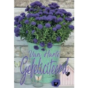 Wenskaart felicitatie bloem met paarse bloemen in een mintgroene pot