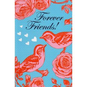 wenskaart forever friends blauw met rood