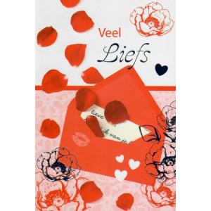 valentijnskaart veel liefs met rode envelop en rozenblaadjes