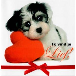 valentijnskaart ik vindje lief met puppy