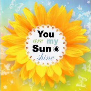 valentijnskaart zonnebloem you are my sunshine