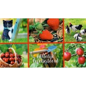 wenskaart hartelijk gefeliciteerd natuur dieren en fruit