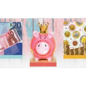 Cadeau envelop zonder tekst met de afbeelding van geld en een spaarvarken