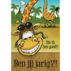 """Wenskaart met de tekst:""""Zie ik het goed? Ben jij jarig?!""""met een getekende giraffe die het eens goed bekijkt"""