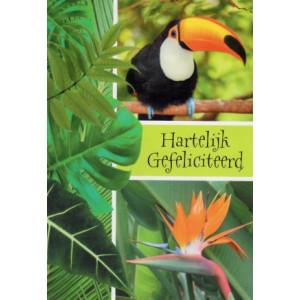 felicitatiekaart hartelijk gefeliciteerd vogel in oerwoud