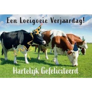 Wenskaart een loeigoeie verjaardag, hartelijk gefeliciteerd met koeien in de wei met een feesthoedje op