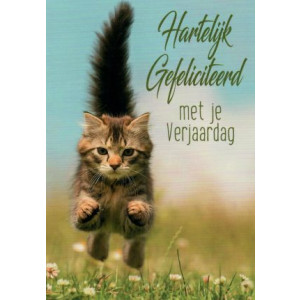 hartelijk gefeliciteerd met je verjaardag kaartje met kat of poes