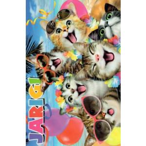 wenskaart jarige met grappige katten