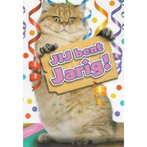 kaartje jij bent jarig met kat of poes