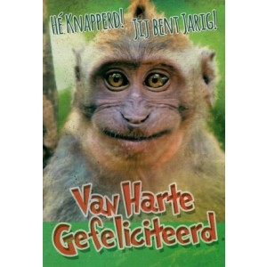 wenskaart hé knapperd, jij bent jarig! van harte gefeliciteerd met de afbeelding van een grappige aap