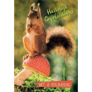 verjaardagskaart met foto van een eekhoorn op een paddenstoel