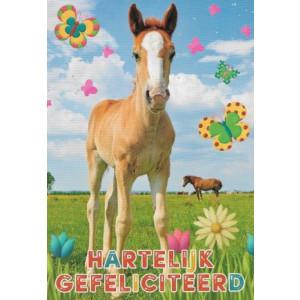 wenskaart met paarden in een weiland hartelijk gefeliciteerd