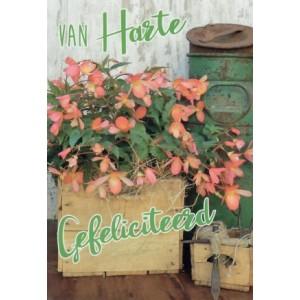wenskaart met bloemen in een kist en een groene melkbus