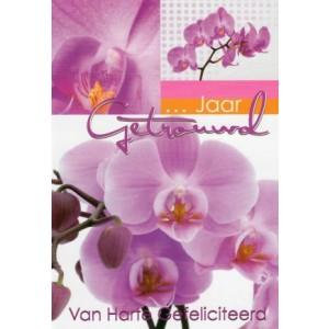 invul wenskaart met roze orchideeën