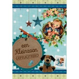 een kleinzoon gefeliciteerd wenskaart met afbeeldingen van een baby in een mandje, een hondenknuffel en een speelgoedvliegtuig