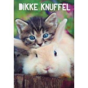 Wenskaart dikke knuffel met een poes en een konijn die elkaar knuffelen