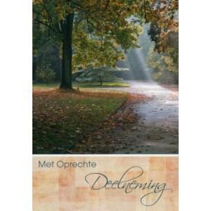 Mooie condoleance wenskaart in kleur met de afbeelding van een bospad.