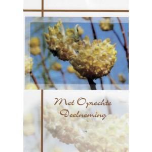 Condoleance wenskaart in kleur met de afbeelding van gele bloemknoppen.