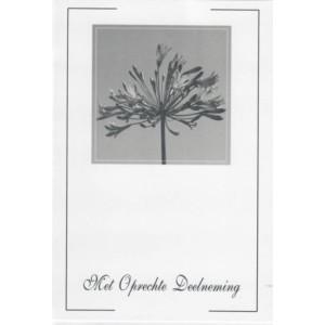 Condoleance wenskaart zwart-wit met afbeelding van een bloem.