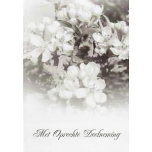 Condoleance wenskaart zwart-wit met een afbeelding van witte bloesem.
