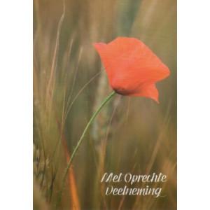 Condoleance wenskaart in kleur met een rode bloem.
