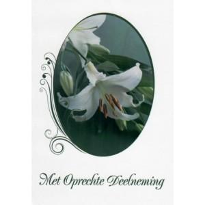Condoleance wenskaart in kleur met de afbeelding van een witte bloem.