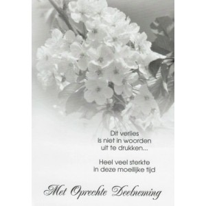 Condoleance wenskaart met een een bloesemtak en een bijpassende tekst.