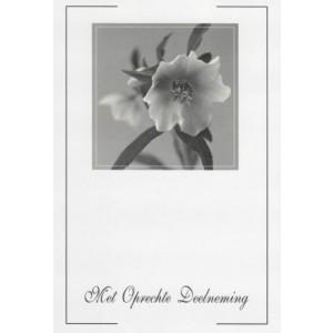 Condoleance wenskaart in zwart-wit met een afbeelding van een witte bloem.