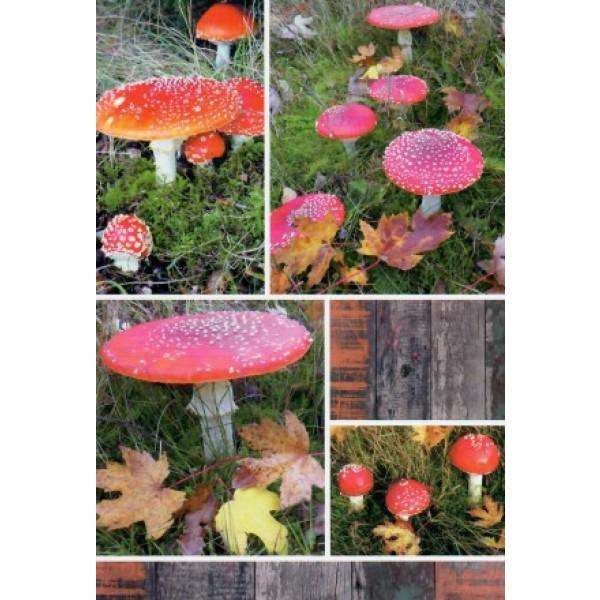 Wenskaart zonder tekst met allerlei afbeeldingen van rood met witte paddenstoelen