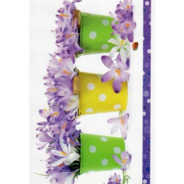 wenskaart 3 potjes met paarse bloemetjes
