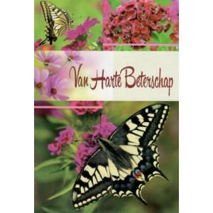 Wenskaart van harte beterschap met paarse bloemen en vlinders