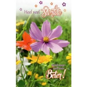 Wenskaart heel veel sterkte, word maar weer snel beter! met kleurige bloemen in een veld