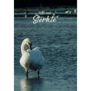 Wenskaart heel veel sterkte met een foto van een zwaan lopend in ondiep water