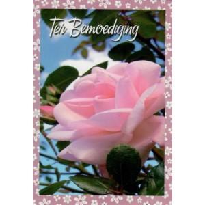 wenskaart ter bemoediging met een foto van een roze roos