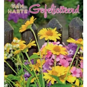 Wenskaart little square gefeliciteerd met gele bloemen bij een hek