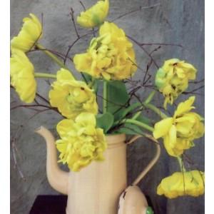 vierkante wenskaart met gele bloemen in een schenkkan