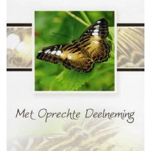 Condoleance wenskaart kleur met de afbeelding van een vlinder.