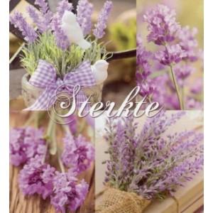 Wenskaart little square sterkte met een pass Partout van lavendel