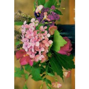 wenskaartje met foto van een vaas met diverse bloemen