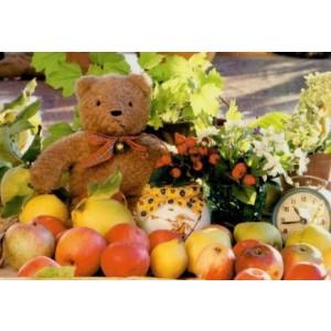 wenskaartje met een foto van een knuffelbeer op een berg met appels