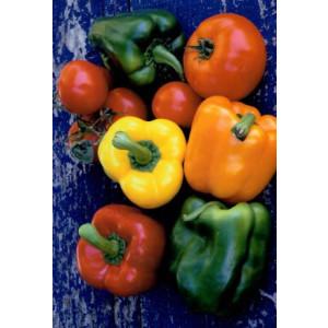wenskaartje met een ftoo van paprika's en tomaten tegen een blauwe achtergrond