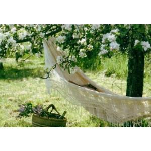 wenskaart met een foto van een hangmat in een boomgaard