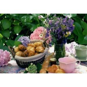 voordelige wenskaarten met een mandje met croissants en een kopje thee