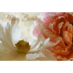 luxe wenskaart verjaardag met een witte en roze bloem