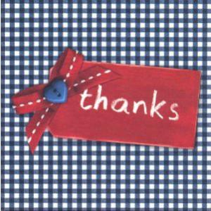 bedankkaartje thanks blauwe ruitjes met rood label