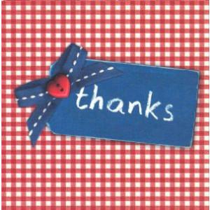 bedankkaartje thanks rode ruitjes met blauw label