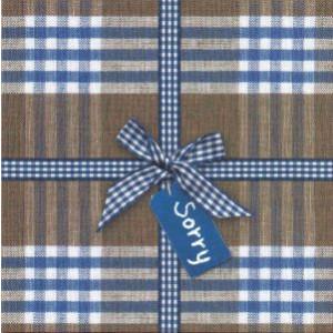 decoratieve wenskaart sorry met blauwe ruitjes en strik