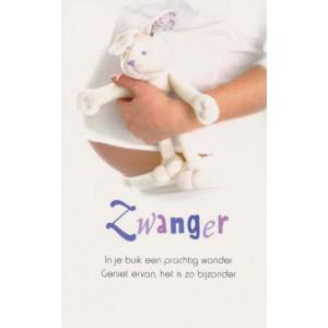 wenskaart zwanger met foto van buik en knuffel