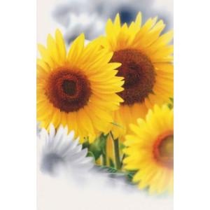 wenskaart met zonnebloemen zonder tekst