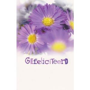 wenskaarten gefeliciteerd met paarse bloemen op achtergrond